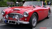 1961 Otro AUSTIN HEALEY Convertible