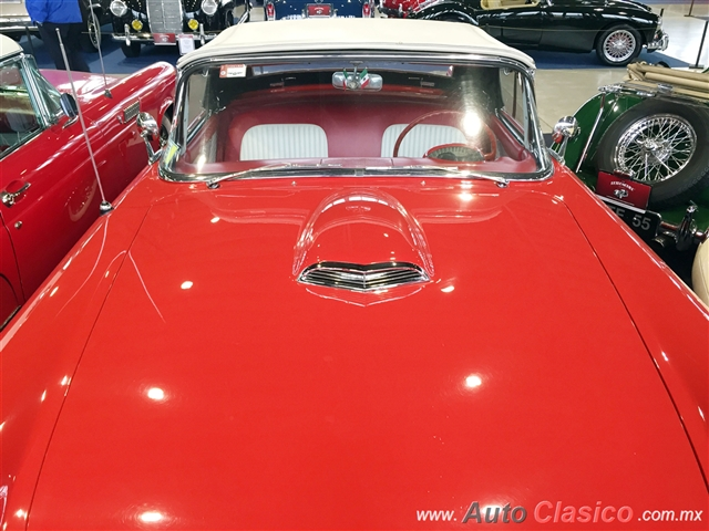 Ford Thunderbird 1955 |