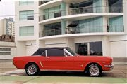 Mustang HT Hard Top Convertible Electrico 1964 1/2