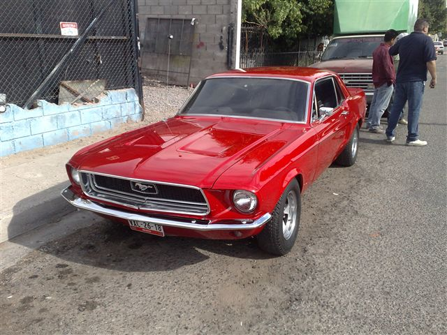 mustang 68 charly