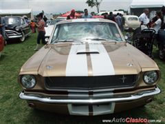 9a Expoautos Mexicaltzingo - Ford Mustang 1965 Fastback GT350