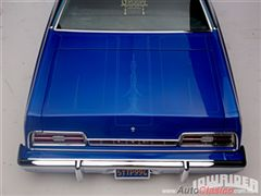 Ford Galaxie LTD 1973 y 1974 centro de calaveras