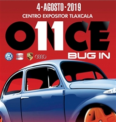 Once Bug In